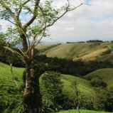 Outside Monteverde
