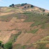 Chiapas Farmland