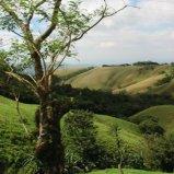 Outside Monteverde
